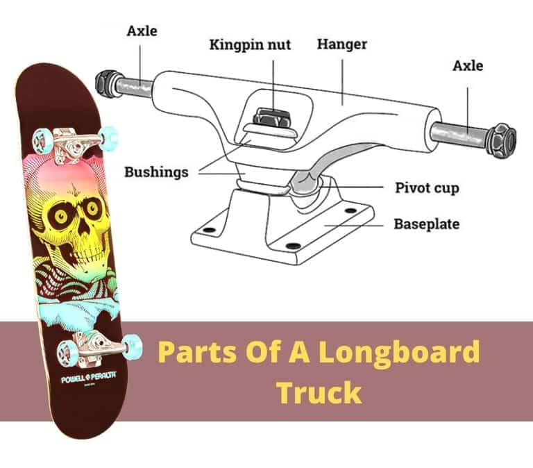 parts of a longboard truck